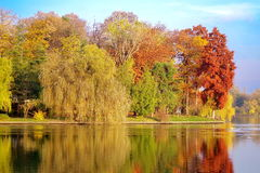 stock image of  autumn landscape. colored trees in the park - herastrau park, landmark attraction in bucharest, romania