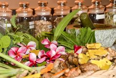stock image of  ayurveda herbs and roots for treatment 2018