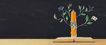 stock image of  back to school concept. tree of knowledge sketch and pencils over open book in front of classroom blackboard.