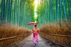 stock image of  bamboo forest. asian woman wearing japanese traditional kimono at bamboo forest in kyoto, japan
