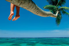 stock image of  beach