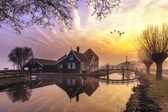 stock image of  beaucoutif typical dutch wooden houses architecture mirrored on