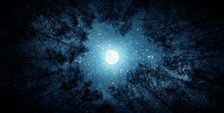 stock image of  beautiful night sky, the milky way, moon and the trees. elements of this image furnished by nasa