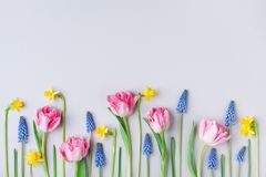 stock image of  beautiful spring flowers on pastel table top view. greeting card for international women day. flat lay