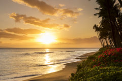 stock image of  beautiful tropical sunset at kaanapali beach in maui hawaii