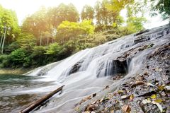 stock image of  beautiful yoro keikoku valley waterfall under morning sun in chiba prefecture, japan