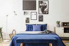 stock image of  bench in front of bed with navy blue pillows between lamp and cabinet in bedroom interior. real photo