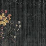stock image of  black bohemian gypsy floral antique vintage grungy shabby chic artistic abstract graphical ledger paper background with flower