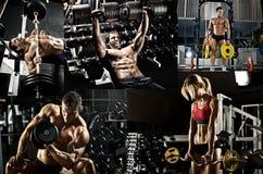 stock image of  bodybuilding