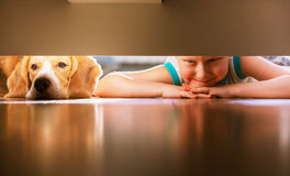 stock image of  boy with doggy friend looks under the bed