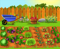 stock image of  cartoon garden with fruits and vegetables