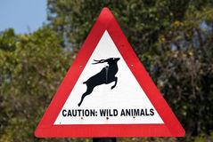 stock image of  caution: wild animals