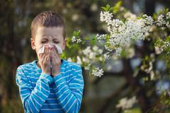 stock image of  child having allergy. boy sitting outdoor with tissue in park near blooming flowers.