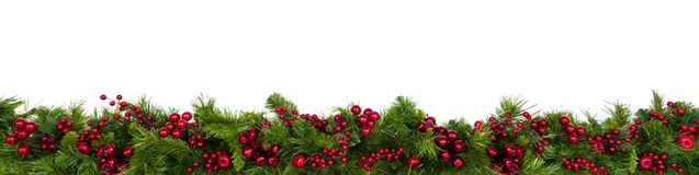stock image of  christmas garland border with red berries over white