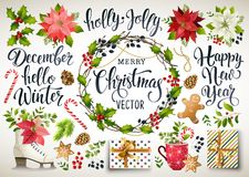 stock image of  christmas set design of poinsettia, fir branches, cones, holly and other plants. cover, invitation, banner, greeting c