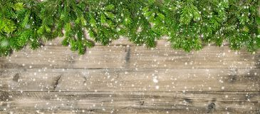 stock image of  christmas tree branches wooden background header