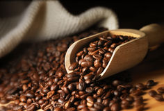 stock image of  coffee bean