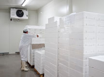 stock image of  cold storage