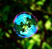 stock image of  colorful soap bubble