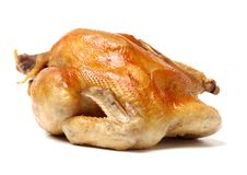 stock image of  cooked chicken. meal,
