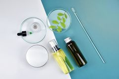 stock image of  cosmetic bottle containers with green herbal leaves, blank label for branding mock-up, natural beauty product concept.