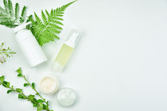 stock image of  cosmetic bottle containers with green herbal leaves, blank label package for branding mock-up