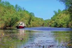 stock image of  danube river. landscape in natural reserve of the danube delta - landmark attraction in romania