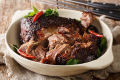 stock image of  delicious spicy slow shredded pulled pork closeup on a plate. horizontal
