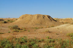 stock image of  desert ground whell