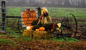 stock image of  fall display