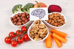 stock image of  drawing of brain and best food for health and good memory, healthy eating concept