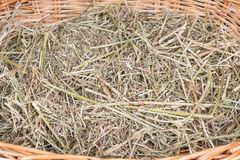 stock image of  dry hay in the basket