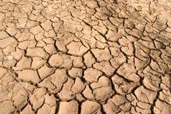 stock image of  dry mud