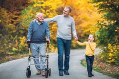 stock image of  elderly father, adult son and grandson out for a walk in the park