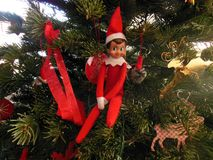 stock image of  elf on the shelf