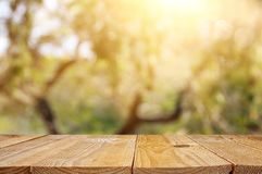 stock image of  empty rustic table in front of green spring abstract bokeh background. product display and picnic concept.