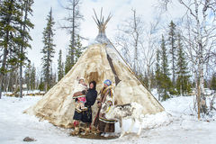 stock image of  everyday life of russian aboriginal reindeer herders in the arctic.