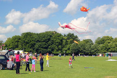 stock image of  families flying kites.