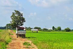 stock image of  farmer transport