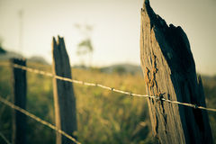 stock image of  the fence