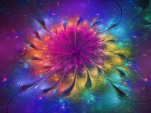 stock image of  flower fractal abstract futuristic, design, dynamic digital render design decorative