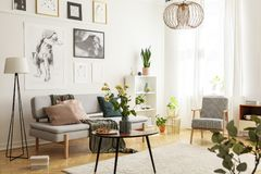 stock image of  flowers on wooden table next to grey couch in living room interior with lamp and posters. real photo