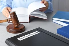 stock image of  folder with words immigration law, gavel