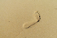 stock image of  foot print on sand