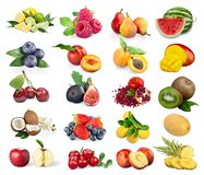 stock image of  fruits