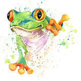 stock image of  funny frog t-shirt graphics. frog illustration with splash watercolor textured background. unusual illustration watercolor frog fa
