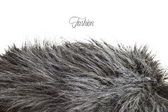 stock image of  fur texture in greyscale - fashion mode