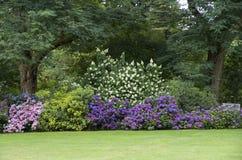stock image of  garden