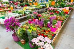 stock image of  garden centre