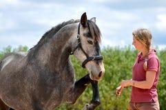 stock image of  girl training horse